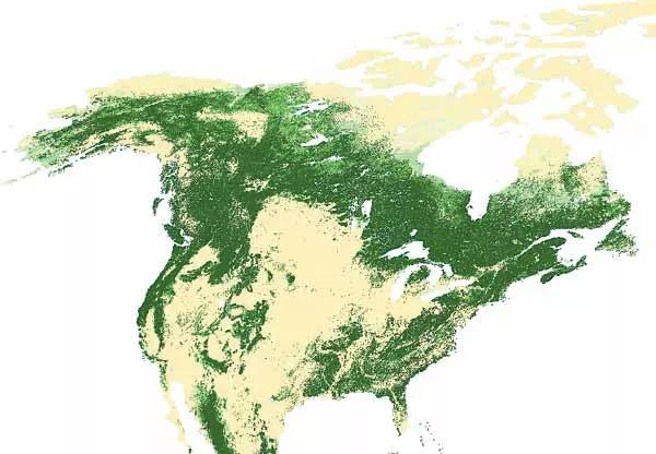 Peta Tutupan Hutan Amerika Utara
