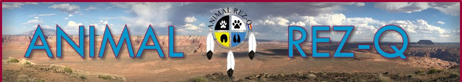 Animal Rez-Q Events Page