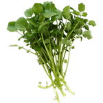 watercress in spanish