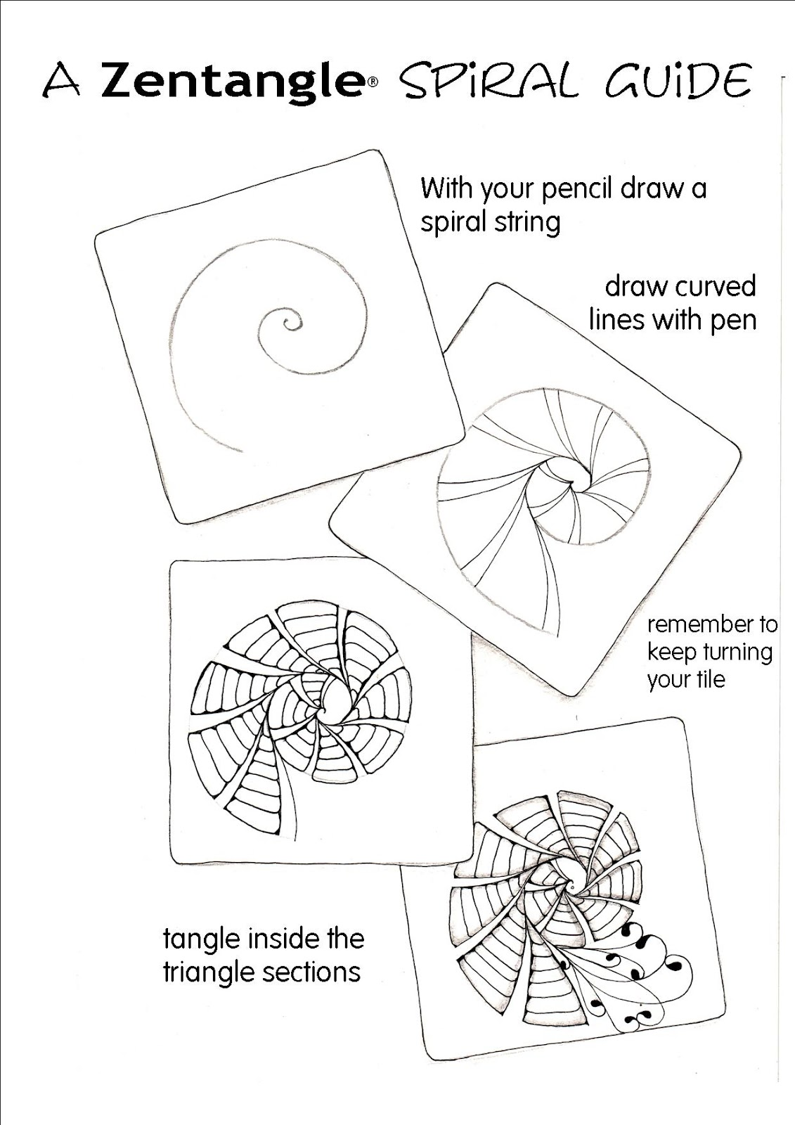 Shelly Beauch Spiral Guide
