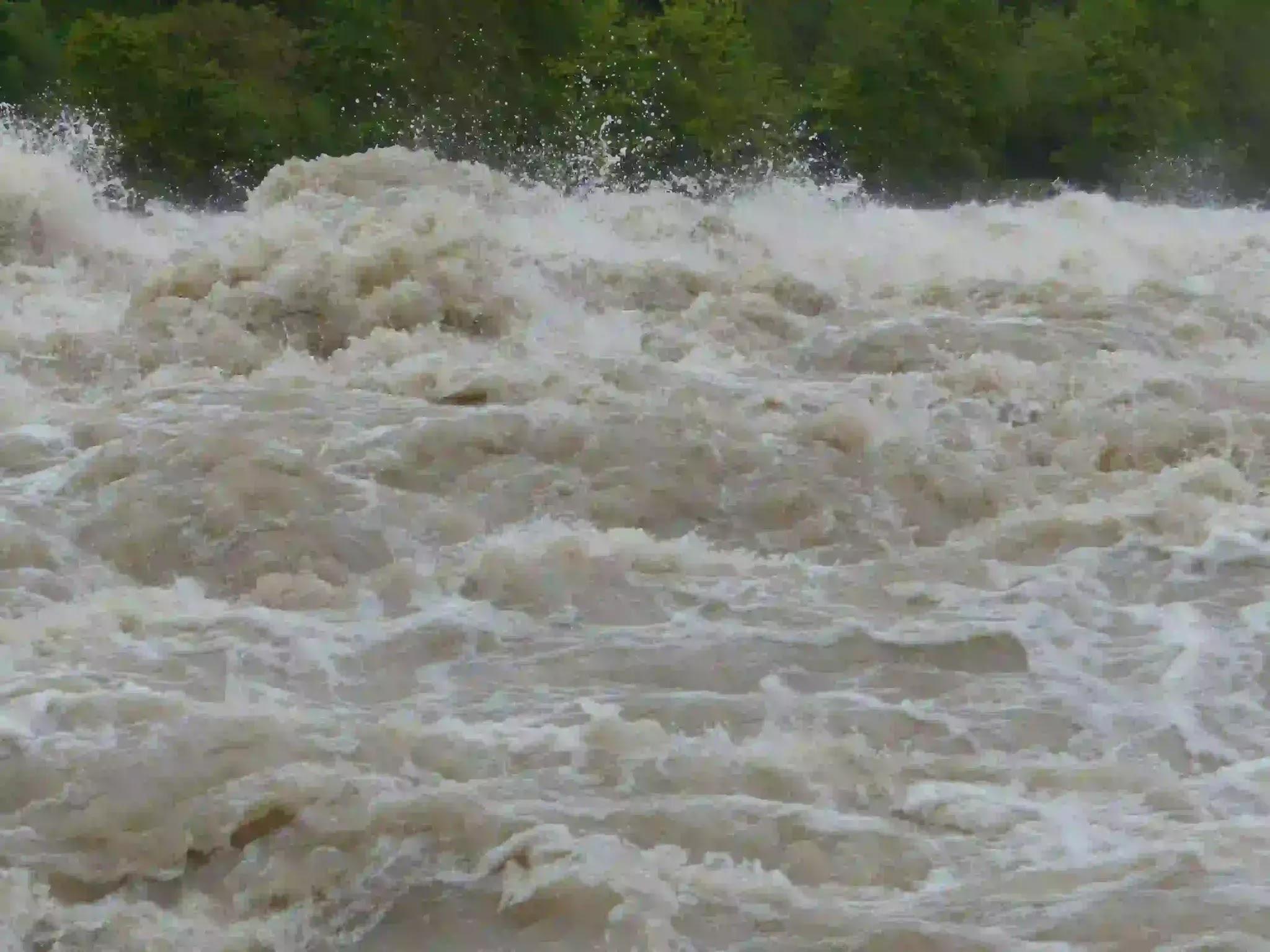Flood in Harappan forest in Uttarakhand
