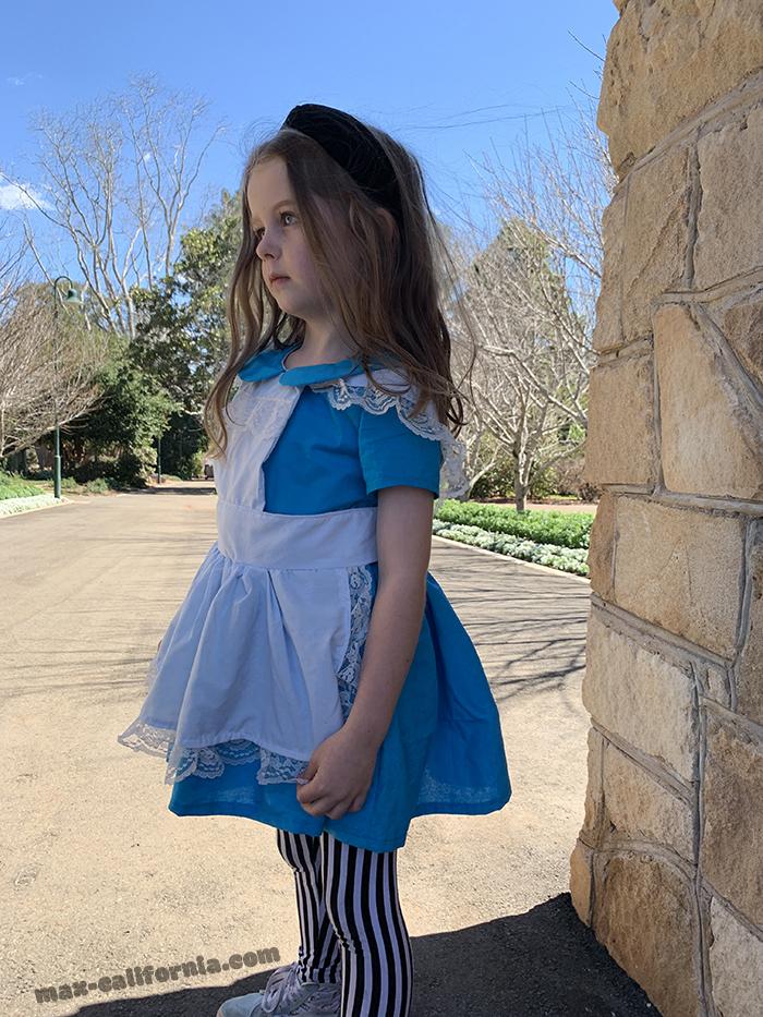 DIY Alice in Wonderland costume   • www.max-california.com