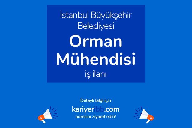 İstanbul Büyükşehir Belediyesi, orman mühendisi alacak. Adaylarda aranan nitelikler neler? Detaylar kariyeribb.com'da!