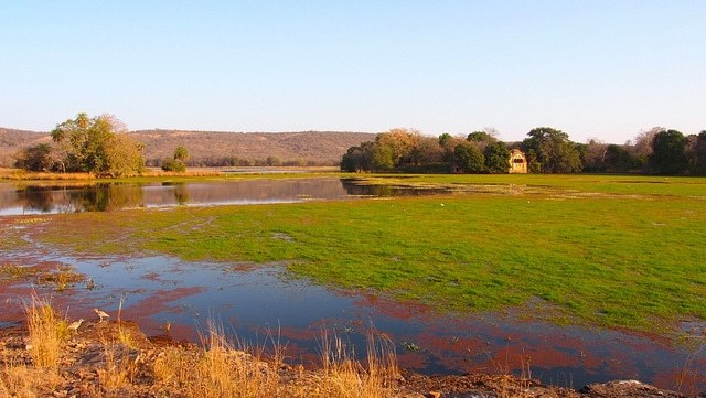 Ranthambore Netional Park : A Tiger Reserve, Safari,Wildlife, Best time to Visit