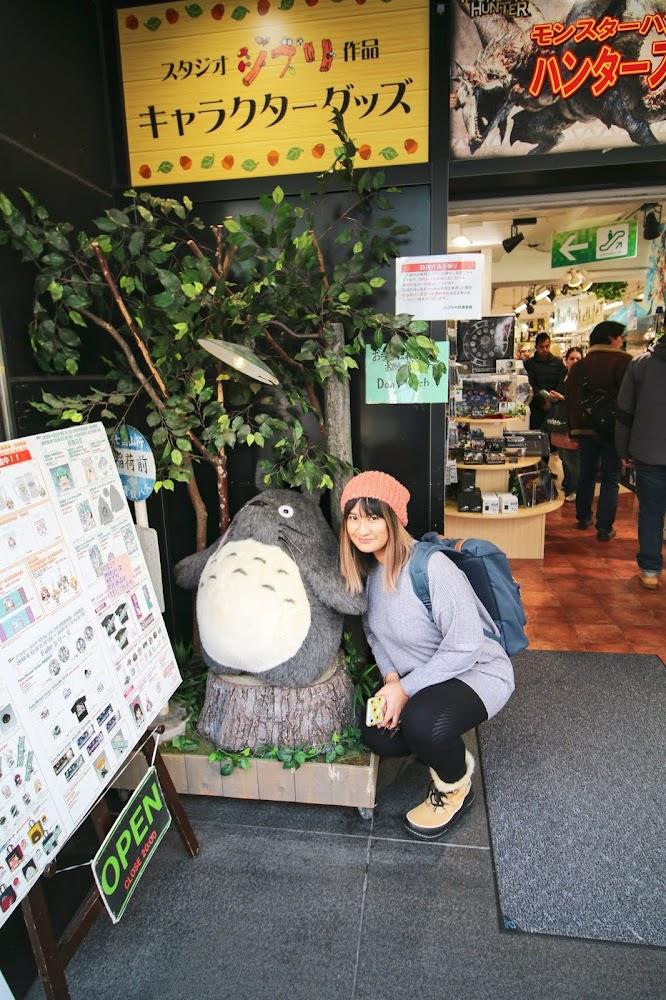 Akihabara Tokyo Japan Travel Blog Totoro