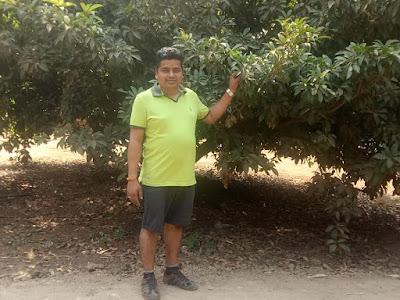 Saguna Baug