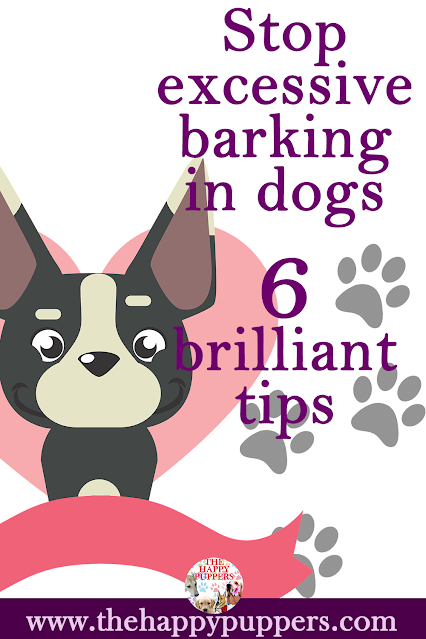 Stop excessive barking in dogs 6 excellent tips