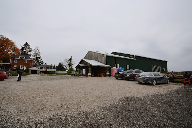 Brantview Apples & Cider, Ontario, Canada