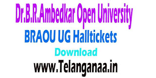 BRAOU-Dr.B.R.Ambedkar Open University UG Halltickets Download