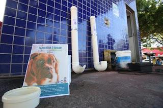 36ª CIPM disponibiliza comida e água para cães e gatos de rua