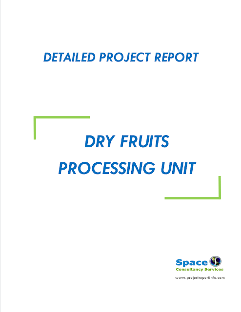 Project Report on Dry Fruits Processing Unit