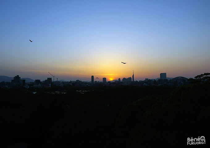 Sunset from Fukuoka castle