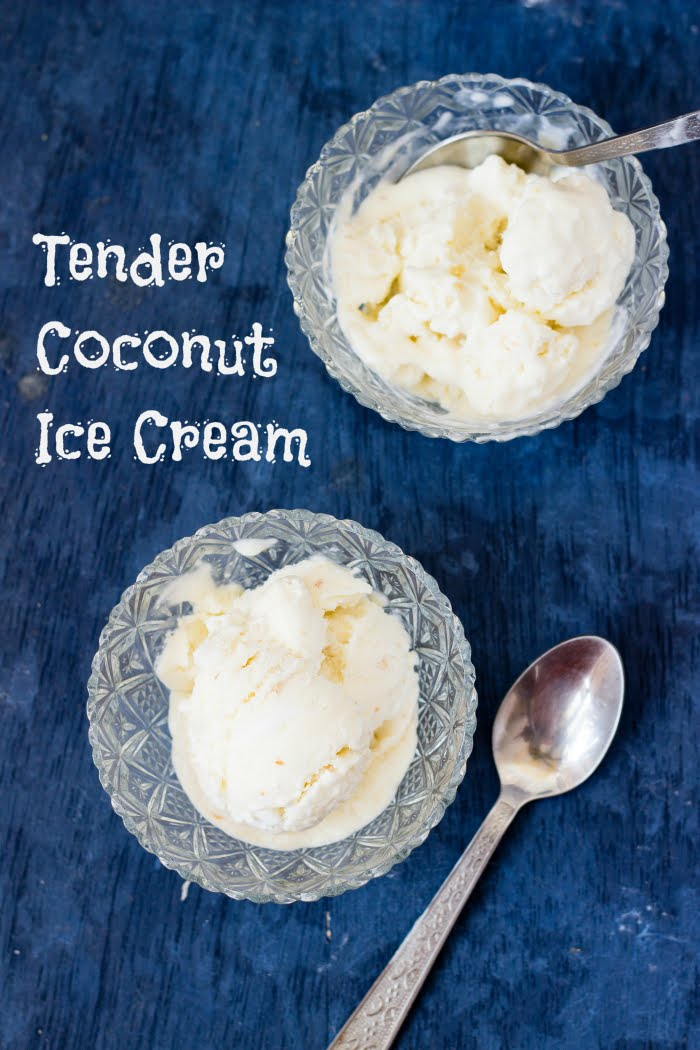 How to make coconut ice cream, coconut ice cream recipe, how to make ice cream without eggs, how to make ice cream without ice cream maker, naturals tender coconut ice cream recipe at www,oneteaspoonoflife.com