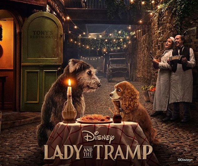 D23 2019 Disney+, Lady and the Tramp