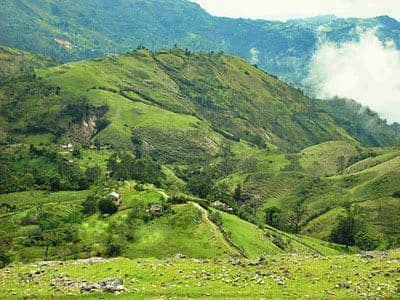 desa Fatu'ulan di tts