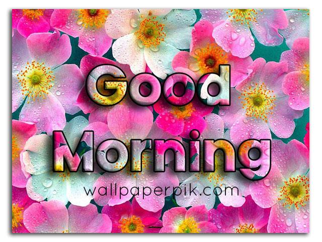 good morning wish for gf in hindi