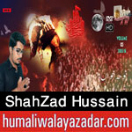 http://www.humaliwalayazadar.com/2015/10/shahzad-hussain-nohay-2016.html