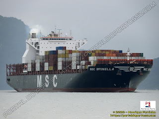 MSC Brunella