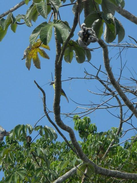 Guatemara ケツァールテナンゴ