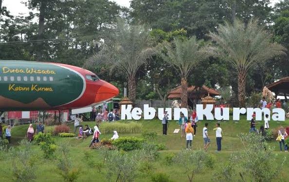 Tidak Perlu Ke Arab, Wisata Kebun Kurma Juga Ada Di Pasuruan Jawa Timur