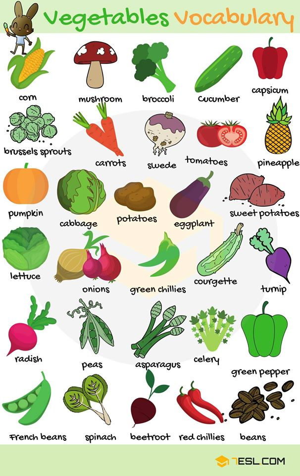 தினமும் ஆங்கிலத்தில் புதிய வார்த்தைகளை கற்று கொள்ளலாம் இன்றைய வார்த்தைகள்  Vegetables Vocabulary