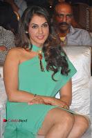 Actress Isha Koppikar Pos in Green Dress at Keshava Telugu Movie Audio Launch .COM 0001.jpg