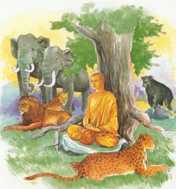 Đạo Phật Nguyên Thủy - Tìm Hiểu Kinh Phật - TRUNG BỘ KINH - Giáo giới Channa
