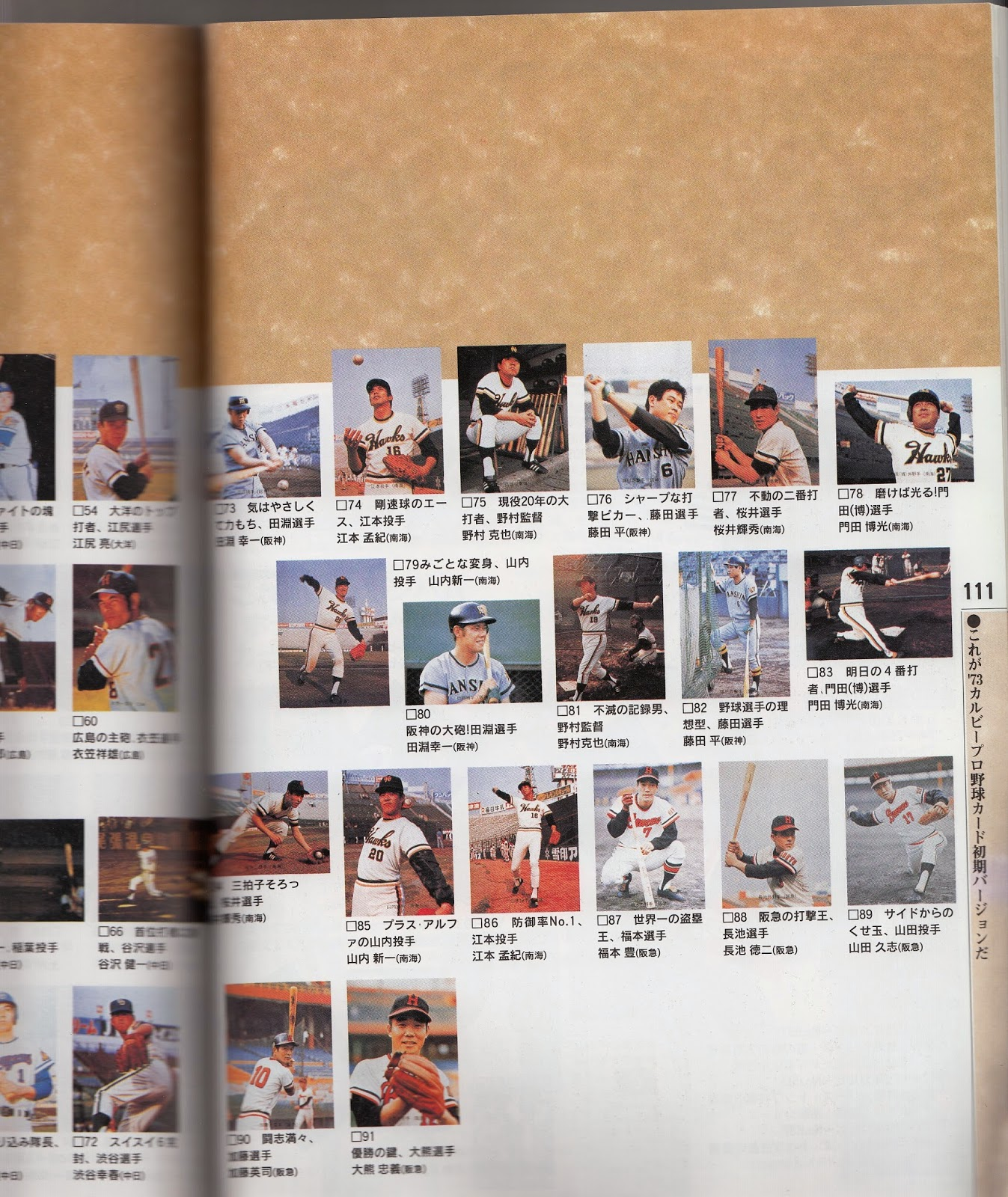 Japanese Baseball Cards 1994 Perfect Card Guide