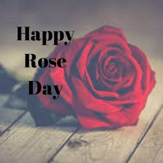 Rose Day Whatsapp Image