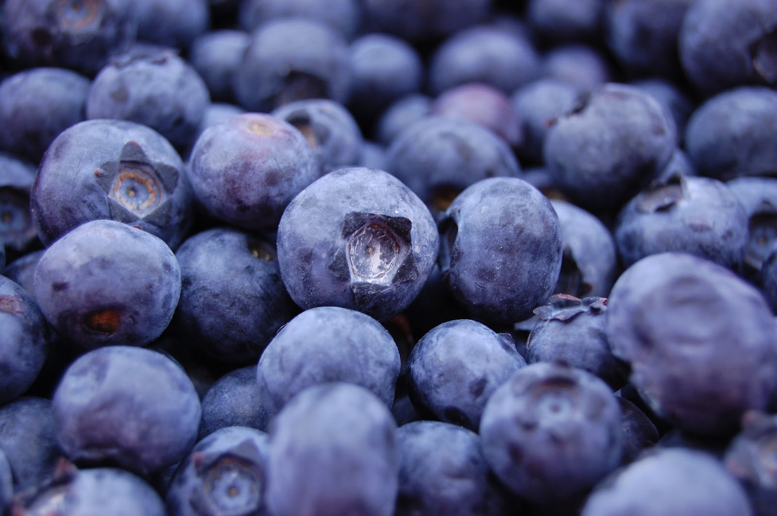 Fruit Warehouse: Blueberry