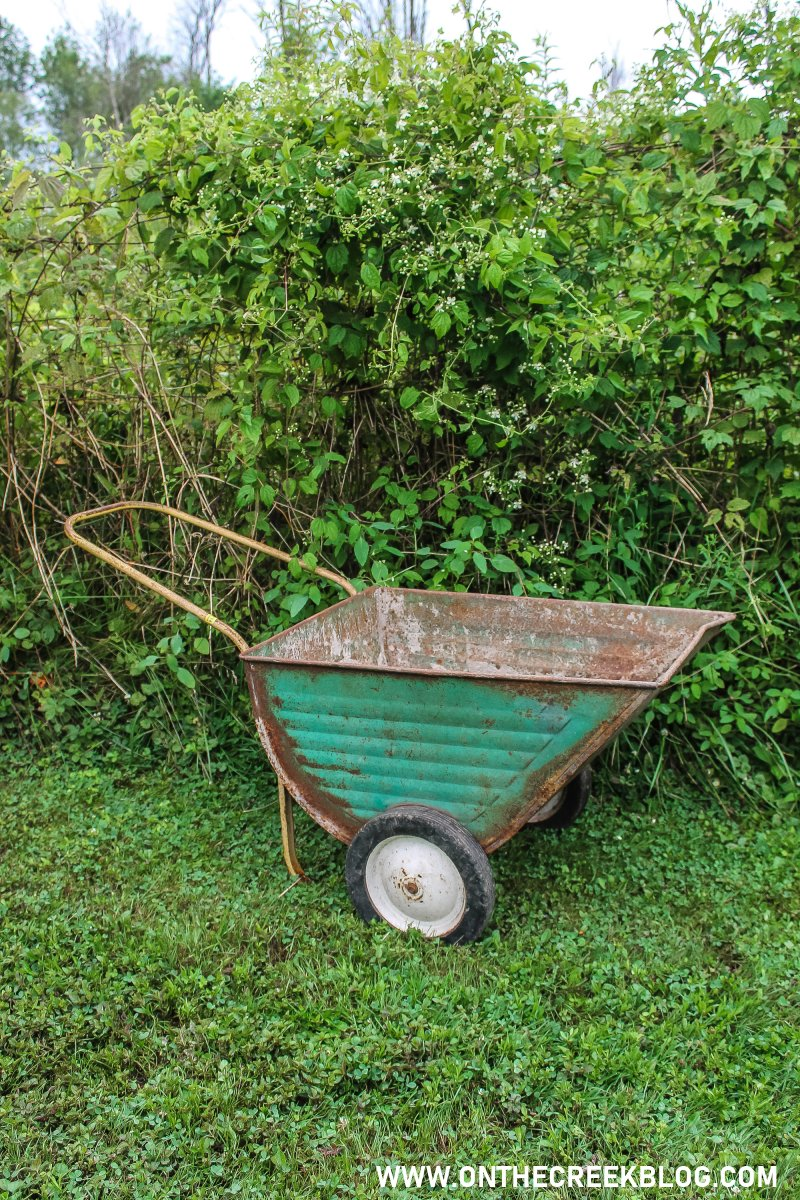 Vintage lawn cart! | Thrifting Finds! | On The Creek Blog