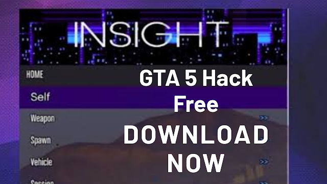 insight hack gta v