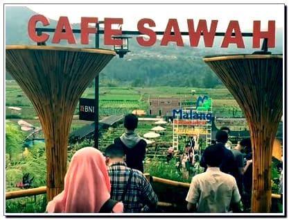 Cafe Sawah Malang Jawa Timur