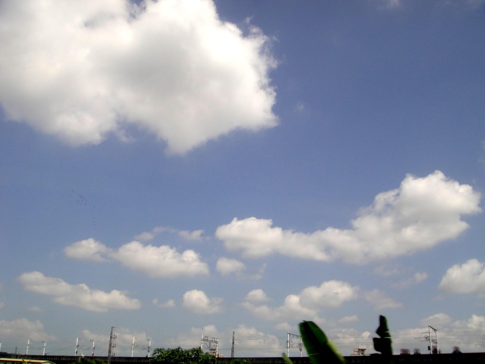 DWAN雲之端: 棉花似的浮雲,空中飄來飄去--今天天氣:晴,藍藍的天白白的雲
