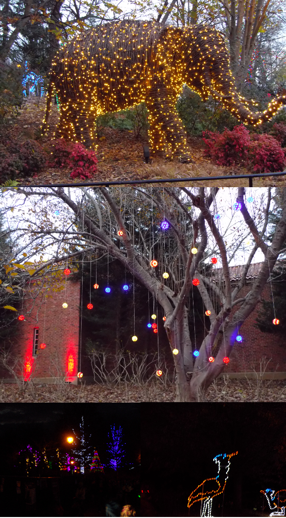 One Savvy Mom Nyc Area Mom Blog Zoolights At The