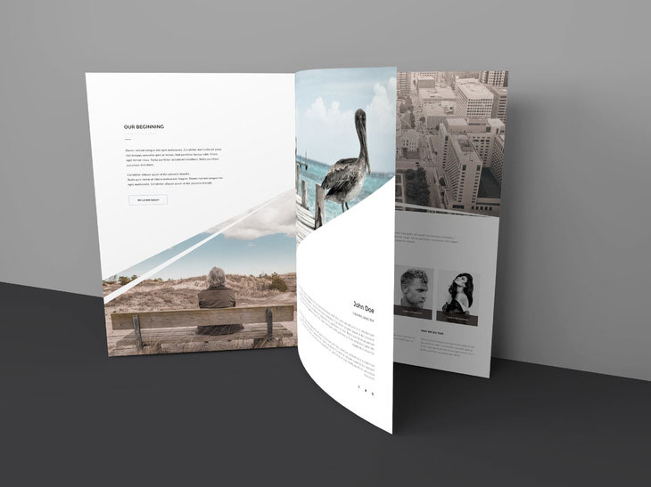 Three Page Brochure Mockup