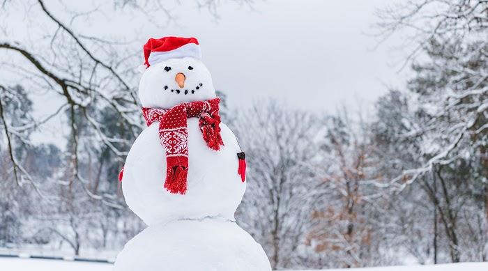 Выберите снеговика – узнайте что ждет зимой