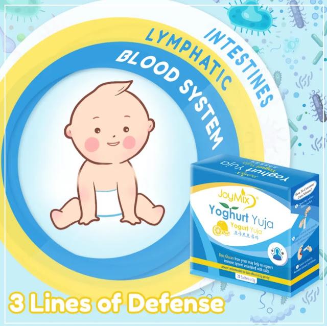 Joymix Yoghurt Yuja Suplemen Probiotik Untuk Kesihatan dan Tingkatkan Imuniti Badan