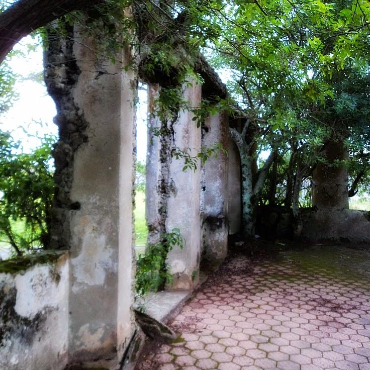 Ruínas do Antigo Leprosário de São Francisco do Sul, na Praia de Capri