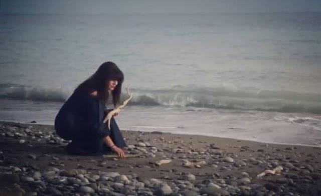 """Μαρία Καλογιαννάκη: Η τέχνη του driftwood στο """"νησί της καρδιάς""""!"""