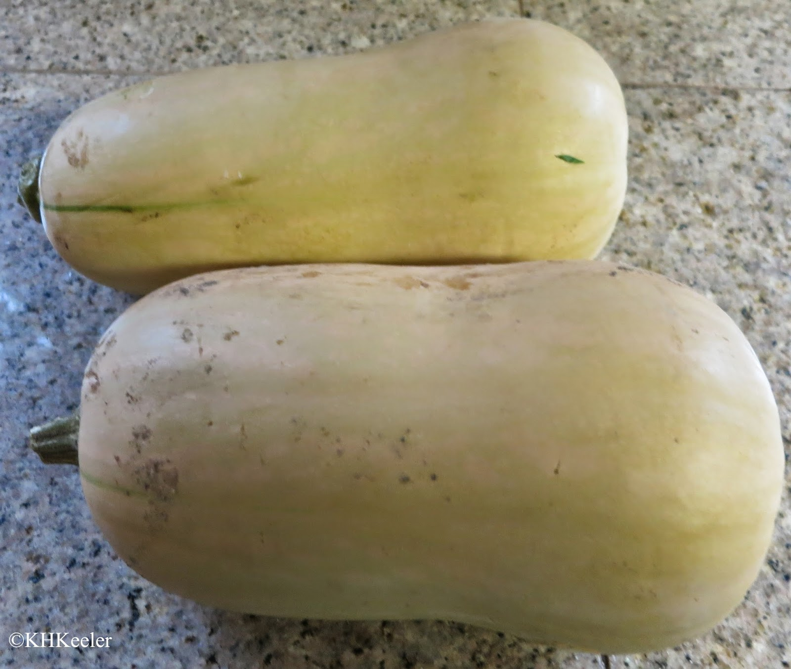 butternut, a winter squash