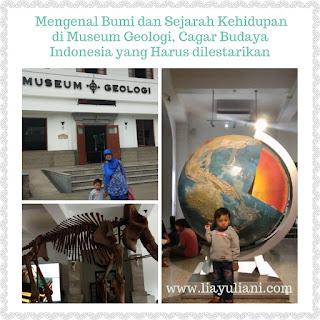 Museum Geologi, Cagar Budaya Indonesia