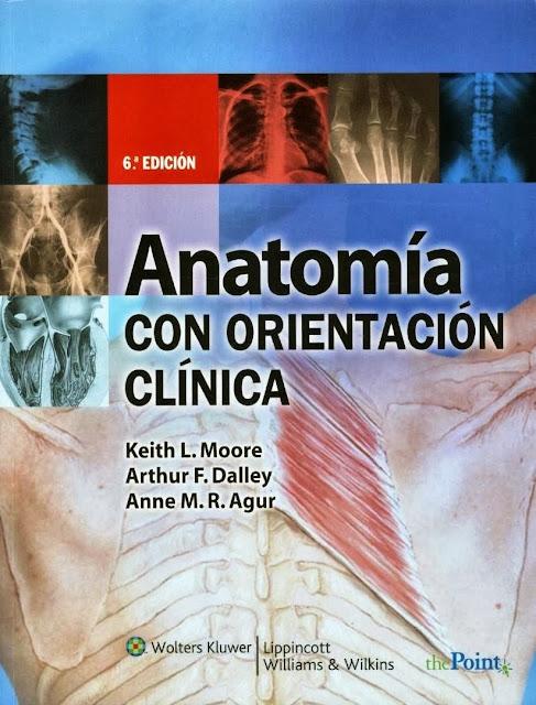 El Manotazo del Ahogado - Blog del Estudiante de Medicina.: Anatomía ...