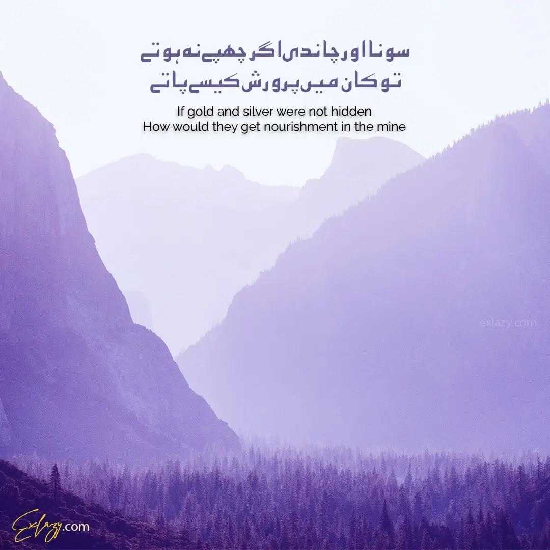 The 10 Best Rumi Quotes in Urdu (Sufi Poetry)