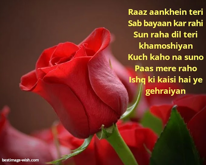 Latest romantic Hindi love sms images messages quotes |2021 Hindi propose shayari images sms messages