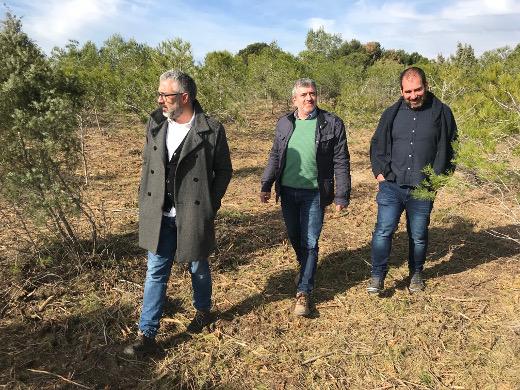 Balance de la protección del ecosistema valenciano y la prevención de incendios en el Día de los Bosques
