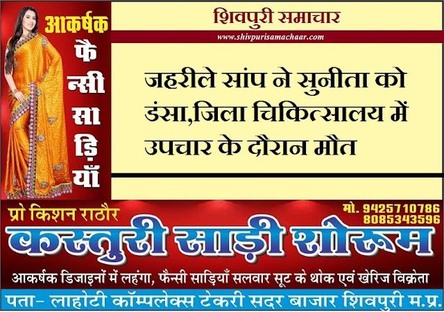 जहरीले सांप ने सुनीता को डसा,जिला चिकित्सालय में उपचार के दौरान मौत - shivpuri news
