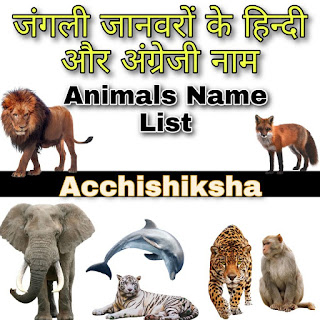 Animals Name in Hindi and English