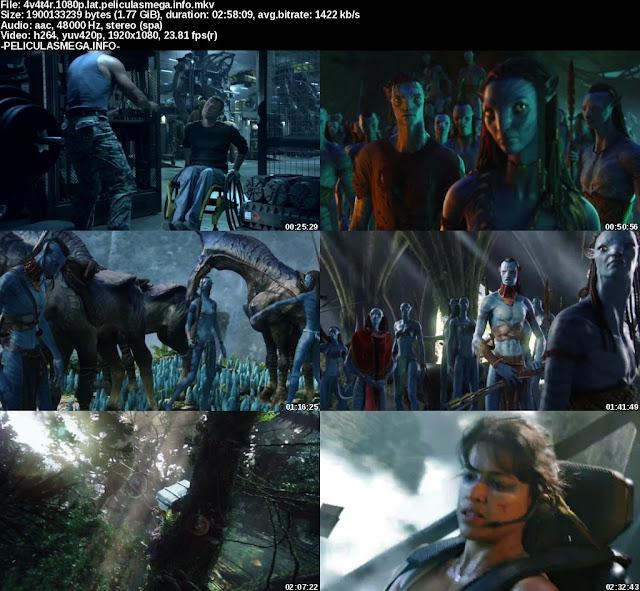 Descargar Avatar Latino por MEGA.