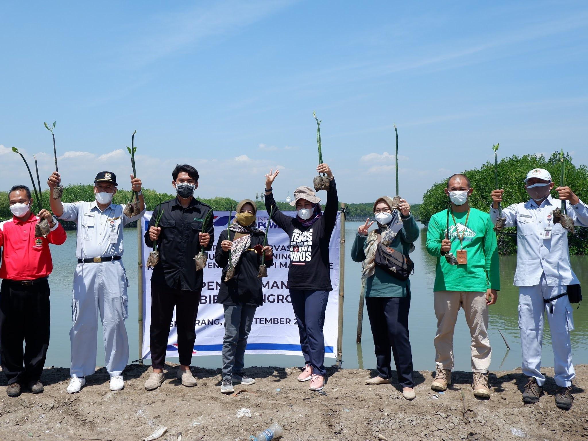 Selamatkan Pesisir Semarang, KeSEMaT dan Indonesia Power Tanam dan Sulam 1.000 Bibit Mangrove